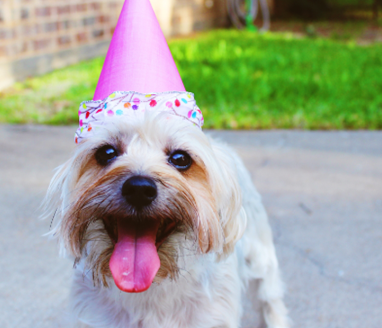 How Your Birthday Shapes Your Business-Selling Plan