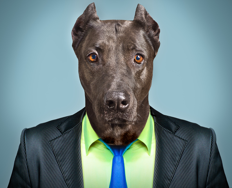 Podcast: Business Buyer, Beware. Business Advisor, Be Aware!